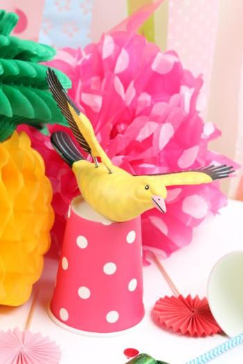 Oiseau des îles pour Carnaval Mesa bella